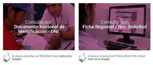 Reniec cómo consultar Perú